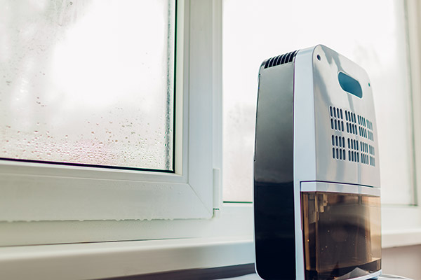 dehumidifiers help with condensation
