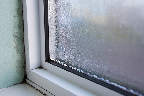 windows will began to rot if they are drafty
